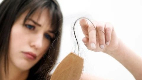 mcsara The reasons for hair loss in the winter large - MCSARA Hair